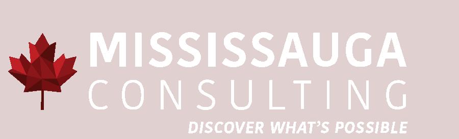 Digital Marketing, SEO, Web Design | Mississauga Consulting